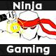 Ninja Gaming Logo - VideoHive Item for Sale