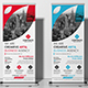 Corporate Rollup Banner - GraphicRiver Item for Sale