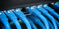 Network LAN internet cables connected in network switches. Server in data center. - PhotoDune Item for Sale