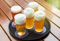 Five cold beers with frothy heads in glasses on a tray - PhotoDune Item for Sale