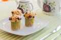Chocolate chip muffins on white plate and green striped tablecloth - PhotoDune Item for Sale