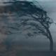 Gloomy Wind 2