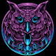 Owl Head With Ornament - GraphicRiver Item for Sale