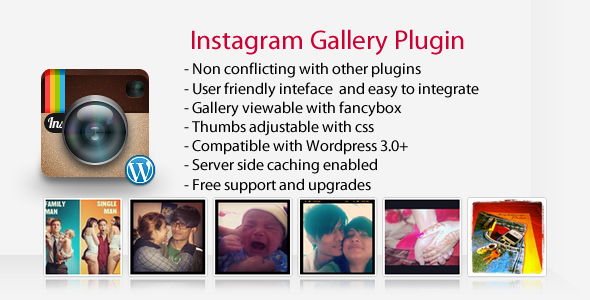 Instagram Gallery - Wordpress Plugin Download