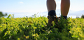 Woman hiker hiking on beautiful green mountain peak - PhotoDune Item for Sale