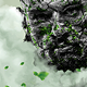 Overgrown Photoshop Action - GraphicRiver Item for Sale