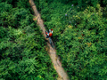 Cross country biking woman cyclist drinking water on tropical forest trail - PhotoDune Item for Sale