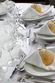 Wedding day in a stylish French  restaurant - PhotoDune Item for Sale