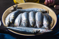 Freshly caught fresh sardines from the Mediterranean sea in a bowl - PhotoDune Item for Sale