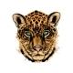 Jaguar Leopard Head Portrait From a Splash of - GraphicRiver Item for Sale