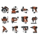 Professional Construction Tool Icons - GraphicRiver Item for Sale