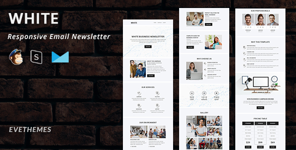 Download White - Responsive Email Newsletter Nulled