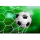 Realistic Soccer Football Ball in the Goal Net on - GraphicRiver Item for Sale