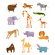 Vector Collection with Biggest African Animals - GraphicRiver Item for Sale