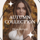 Autumn Sale Instagram Stories - VideoHive Item for Sale