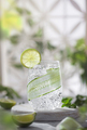 Cucumber cocktail lemonade with lime against the hedge in garden - PhotoDune Item for Sale