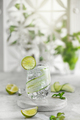 Cucumber cocktail lemonade with lime against white hedge in garden - PhotoDune Item for Sale