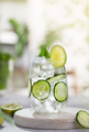 Cucumber cocktail with lime against the hedge in garden - PhotoDune Item for Sale