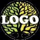 Orchestral Logo Cinematic
