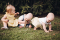 Three little children crawl on a green grass and have fun togehter - PhotoDune Item for Sale