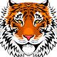 Tiger Portraits Set - GraphicRiver Item for Sale