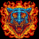 Tiger On Fire - GraphicRiver Item for Sale
