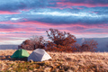 Two tents on amazing meadow in autumn mountains - PhotoDune Item for Sale