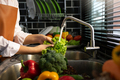 Asian hands woman washing vegetables salad and preparation healthy food in kitchen. - PhotoDune Item for Sale