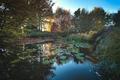 in autumn colors - PhotoDune Item for Sale