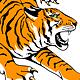 Roaring Tiger - GraphicRiver Item for Sale
