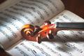Detail of violin - PhotoDune Item for Sale
