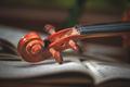 Violin handle - PhotoDune Item for Sale
