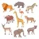 African Savannah Wild Animal Set - GraphicRiver Item for Sale