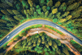 Aerial view of road in beautiful green forest at sunset in autumn - PhotoDune Item for Sale