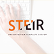 Steir - Business Google Slides Template - GraphicRiver Item for Sale