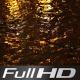 Autumn Rain at Night FULL HD - VideoHive Item for Sale