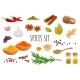 Realistic Spices Set - GraphicRiver Item for Sale