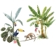 Tropical Composition with Hand Drawn - GraphicRiver Item for Sale