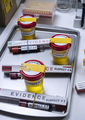Various analyses of urine, saliva and blood of homicide suspects in crime lab, conceptual image. - PhotoDune Item for Sale