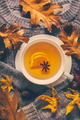 Warm sweater with hot lemon tea with fall foliage on wooden background - PhotoDune Item for Sale