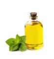 Mint oil - PhotoDune Item for Sale