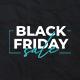 Black Friday Sale Promo B172 - VideoHive Item for Sale