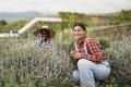 Multiracial gardening people cutting lavender - PhotoDune Item for Sale