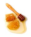 Honey - PhotoDune Item for Sale