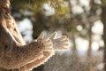 Girl in woolen mittens enjoy sunny weather after snowfall playing with snow, in winter park outdoor - PhotoDune Item for Sale