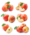 Set of apples - PhotoDune Item for Sale