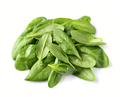 Spinach leaves - PhotoDune Item for Sale