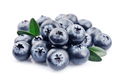 Blueberries with leaves - PhotoDune Item for Sale