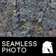 Hi-Res Seamless Tree Bark Texture - GraphicRiver Item for Sale