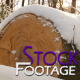 """Winter Log"" FullHD Stock Footage H.264 - VideoHive Item for Sale"